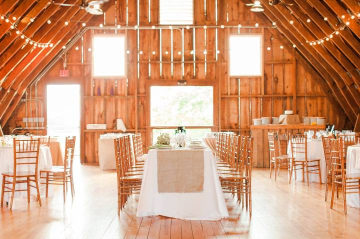 East Lynn Farm, Round Hill, VA. Photo by Lindsay Fauver Photography.
